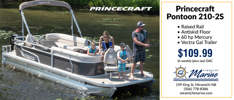 The perfect family boat!